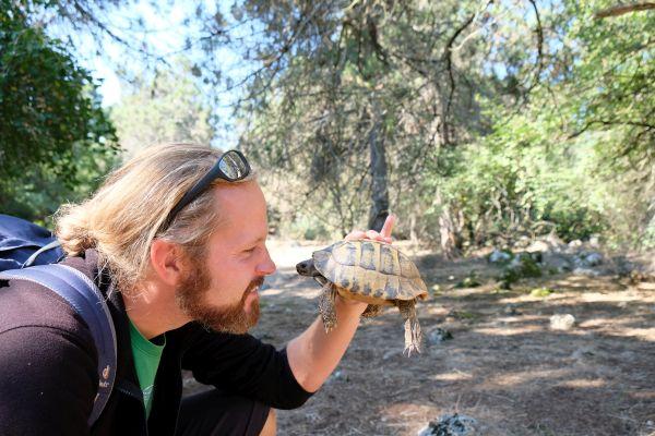 Leider keine Schlangen, aber Schildkröten auf Golem Grad