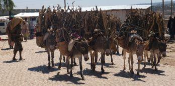 aus den kleien umliegenden Dörfern wird über lange Wege Holz zum Markt transportiert, mit Esel oder...