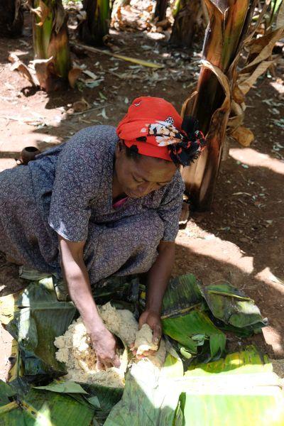 aus den Blättern der falschen Banane wird ein traditionelles säuerliche Kotscho Brot, das abgeschabte Mark wir 14 Tage in der Erde fermentiert...