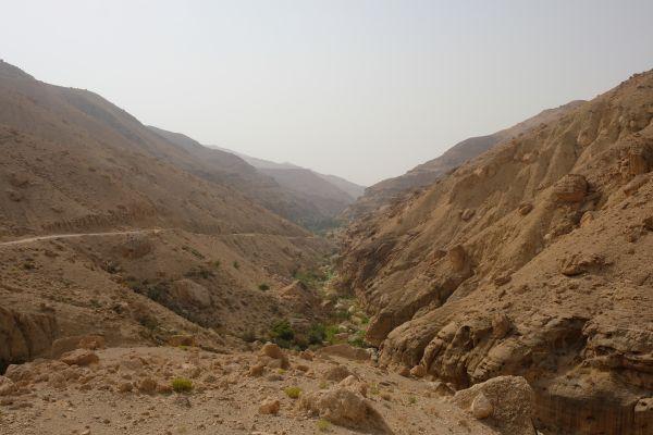 Wadi bin Hamad