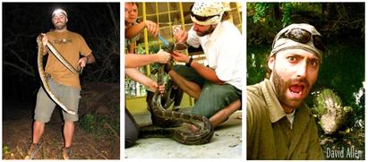 Snakehandling South Africa