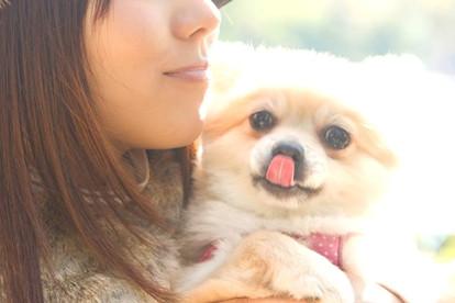 人間が感じる安心感を愛犬にも