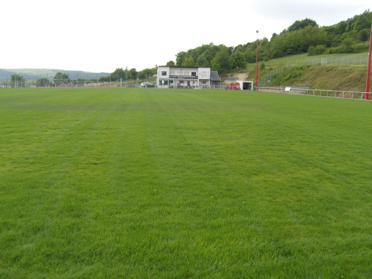 Der erste Rasen - 24.07.2010