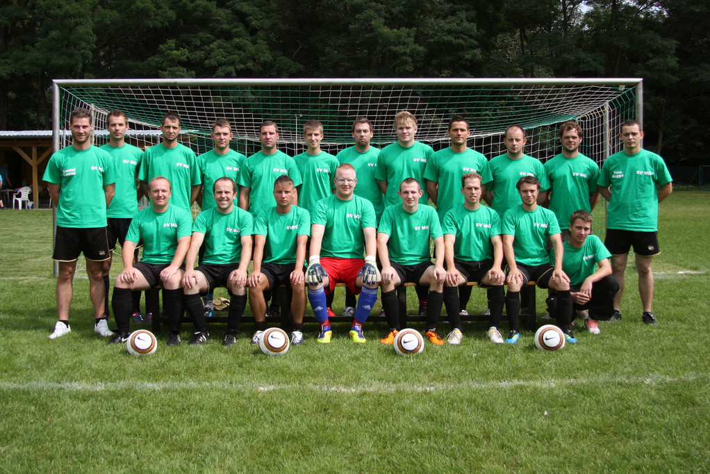 Saison 2011 / 12 in Trainingsshirts