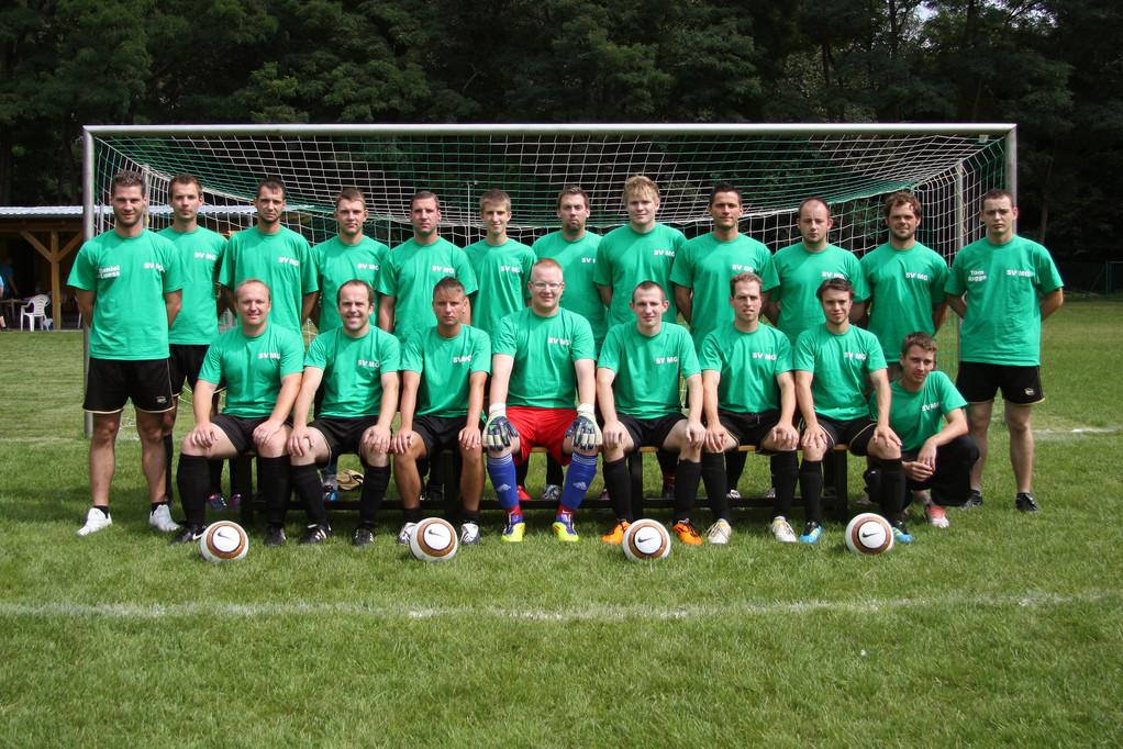 Saison 2011 / 12 in Trainingsshirts