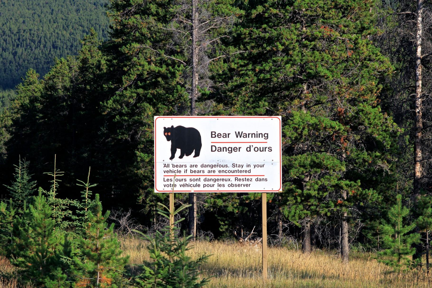 Sicherheitshinweis Bären