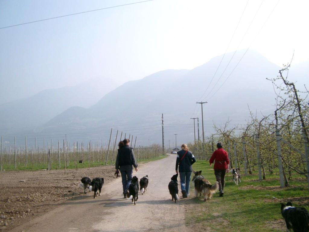 Spaziergang mit Freunden
