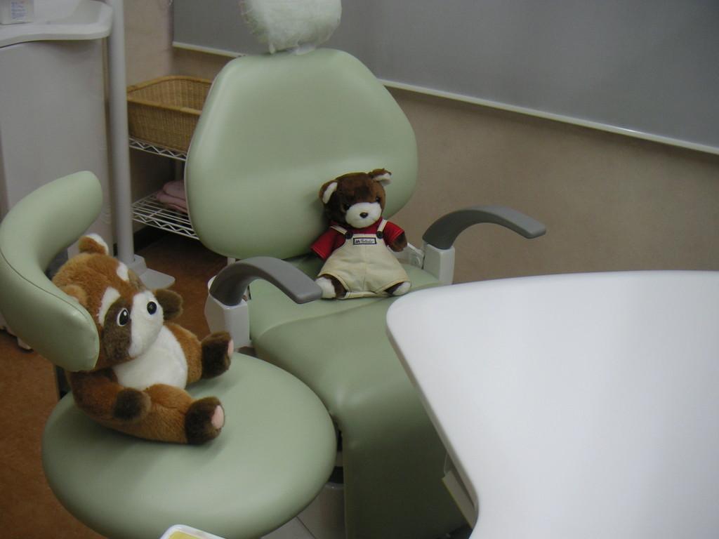 アライグマ先生の診察をうけている患者のクマさん