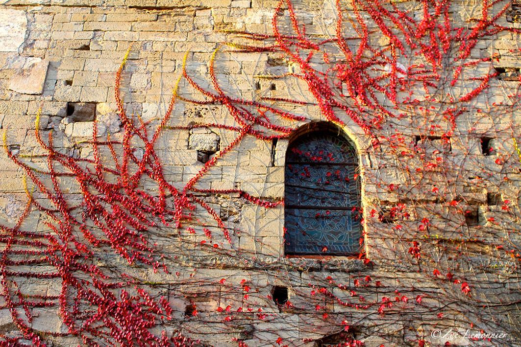 mur d'une abbaye cistercienne