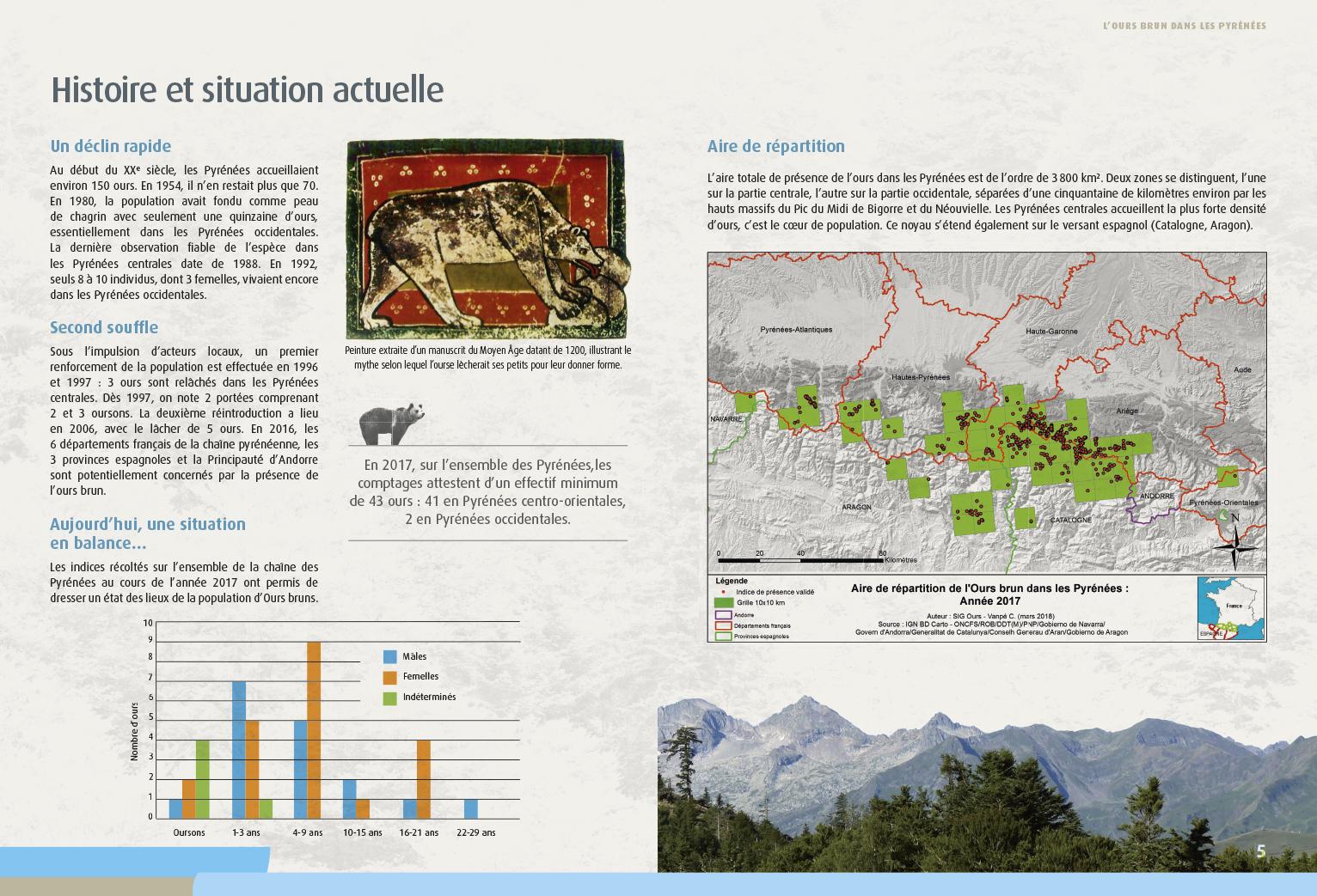 Pages intérieures brochure 12 pages Ours brun dans les Pyrénées 2018 - DREAL Occitanie