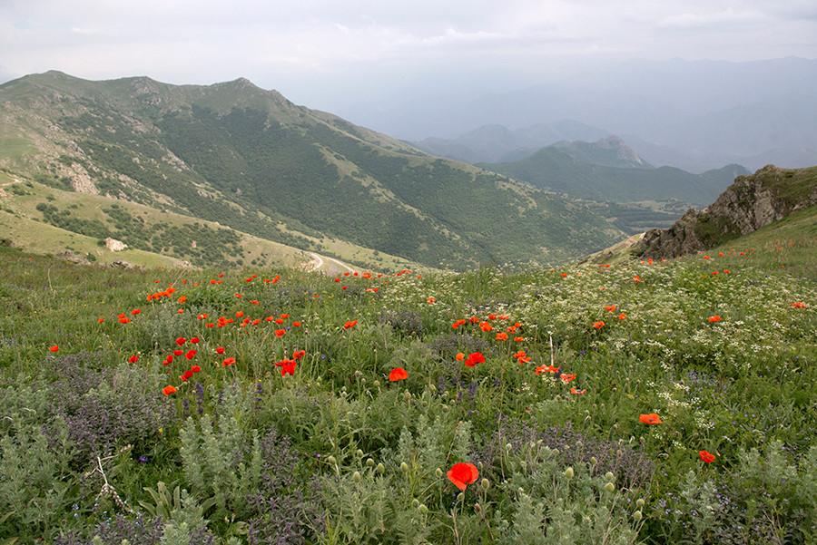 Montagne de Meghri