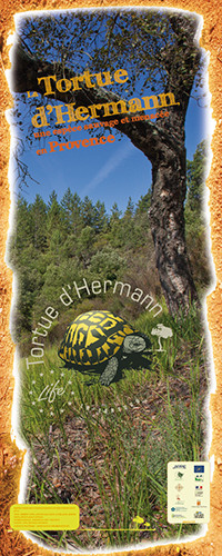 Communication sur le programme Life Tortue d'Hermann- Village des tortues de Gonfaron - 2012