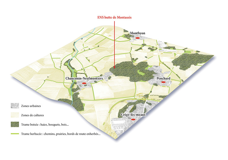 Schéma pédagogique - Conseil général de Seine-et-Marne - 2012