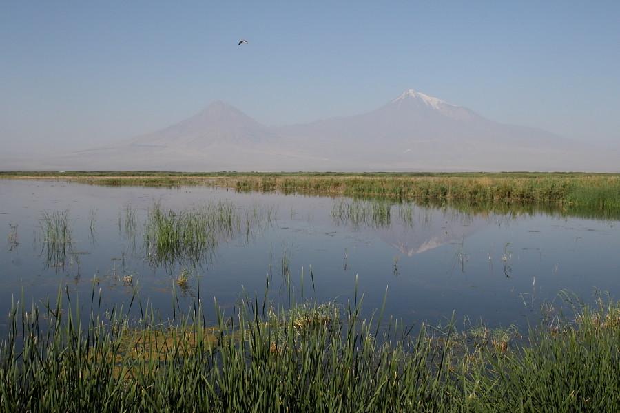 Vue sur le mont Ararat depuis Armash