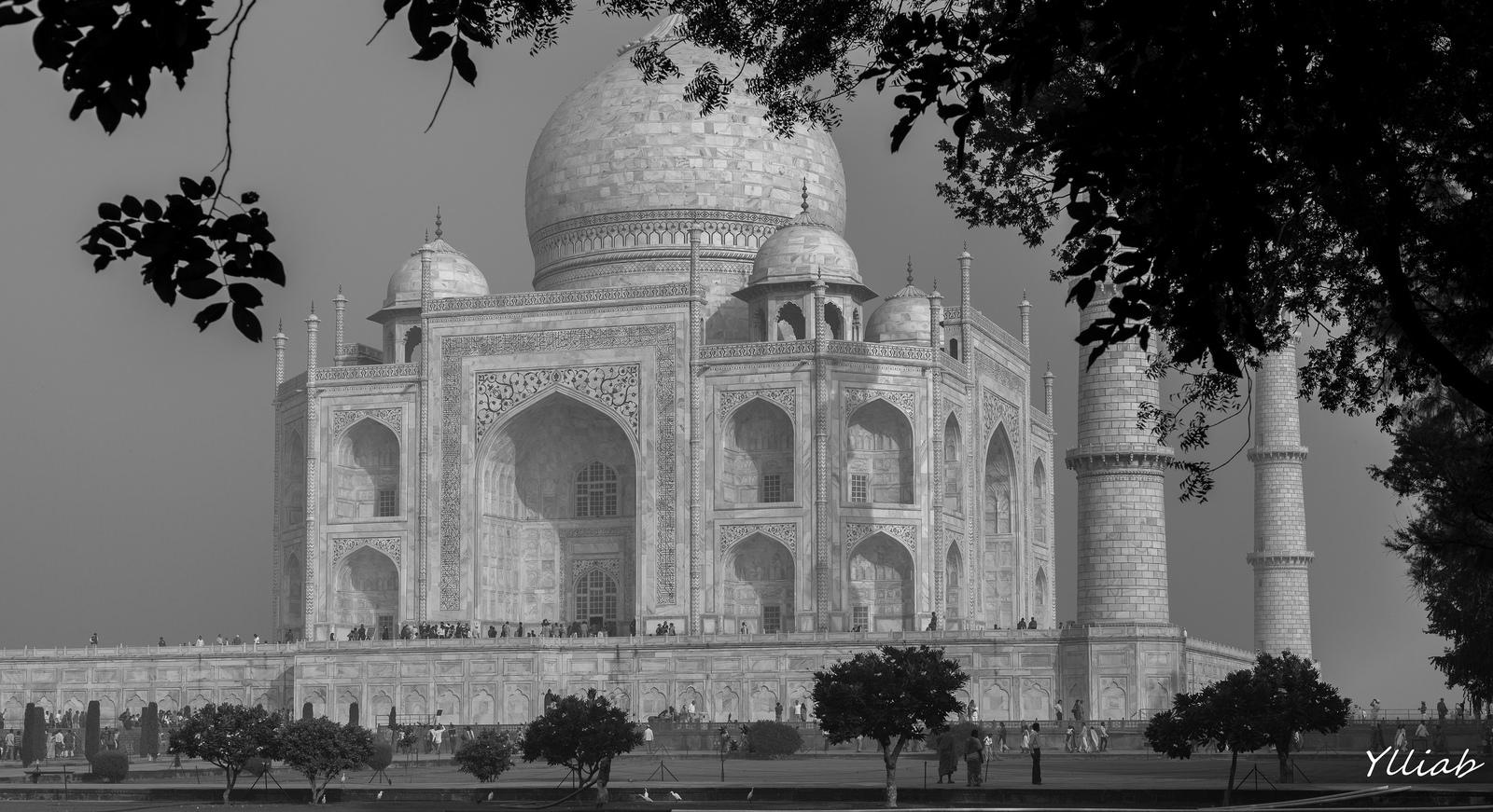 The Taj Mahal*