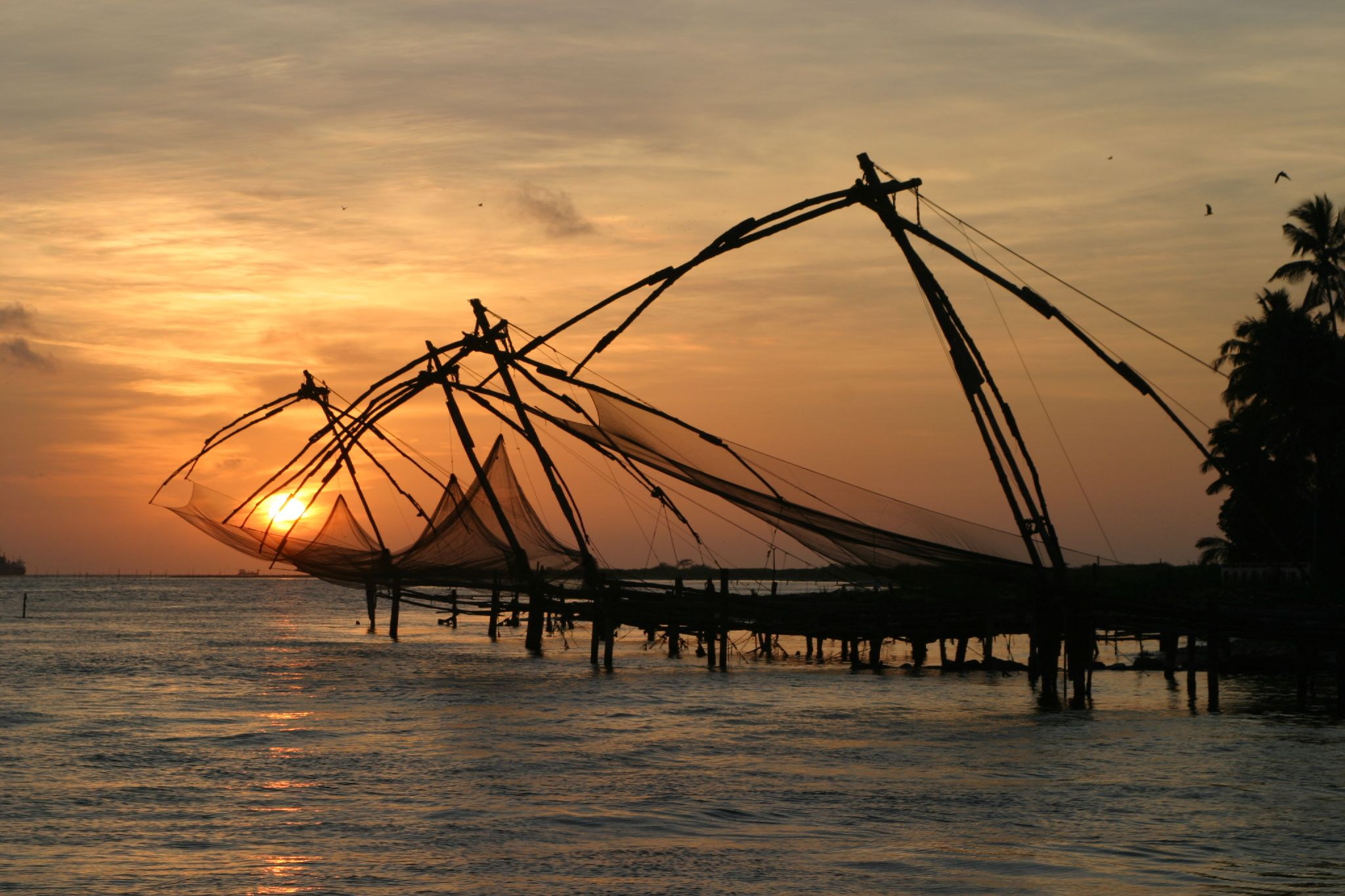 Fishing nets in South India*