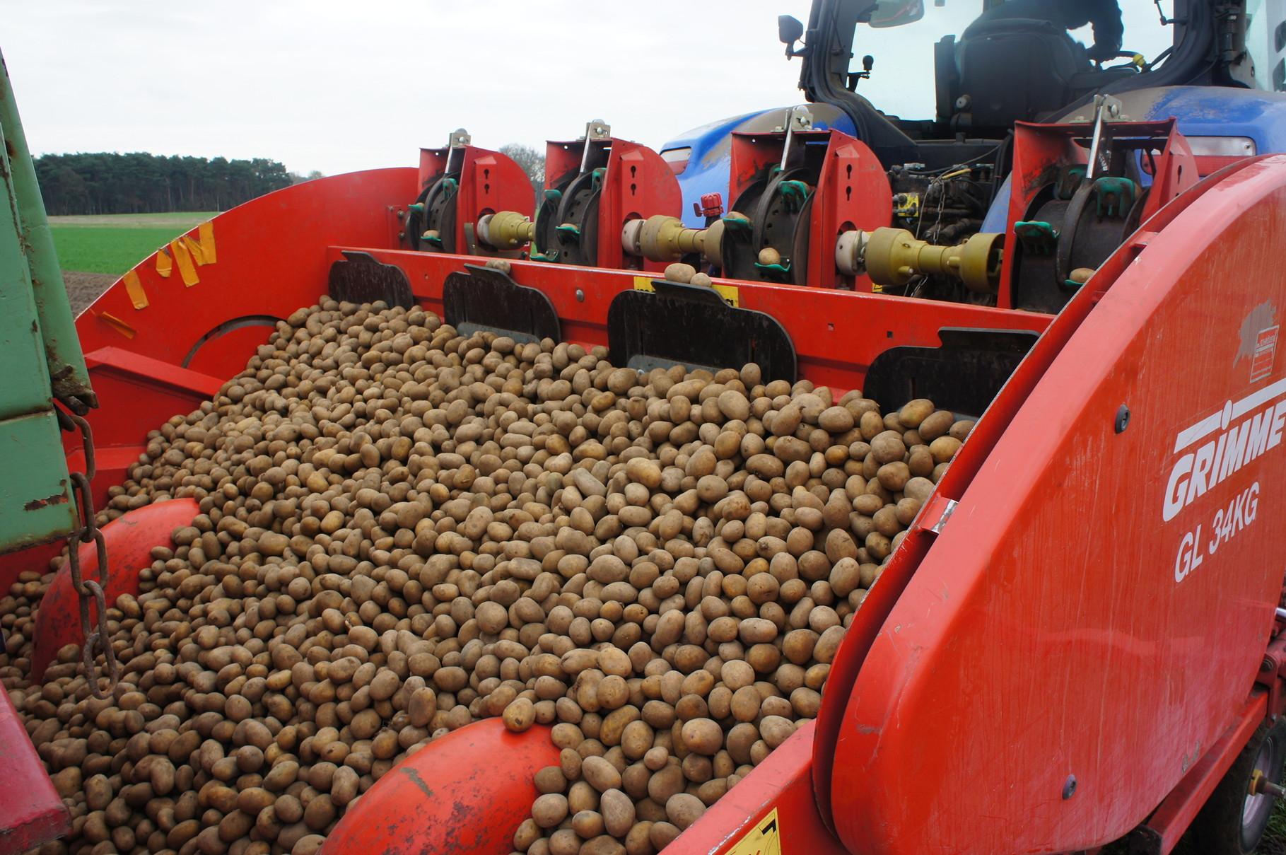 Kartoffelpflanzung-die befüllte Kartoffelpflanzmaschine
