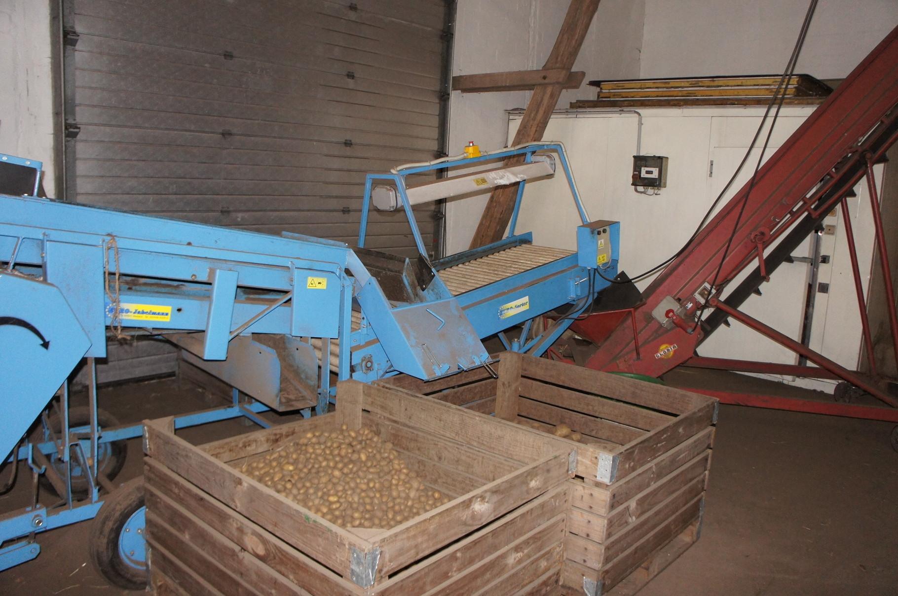 An dieser Maschine werden die Kartoffeln sortiert.