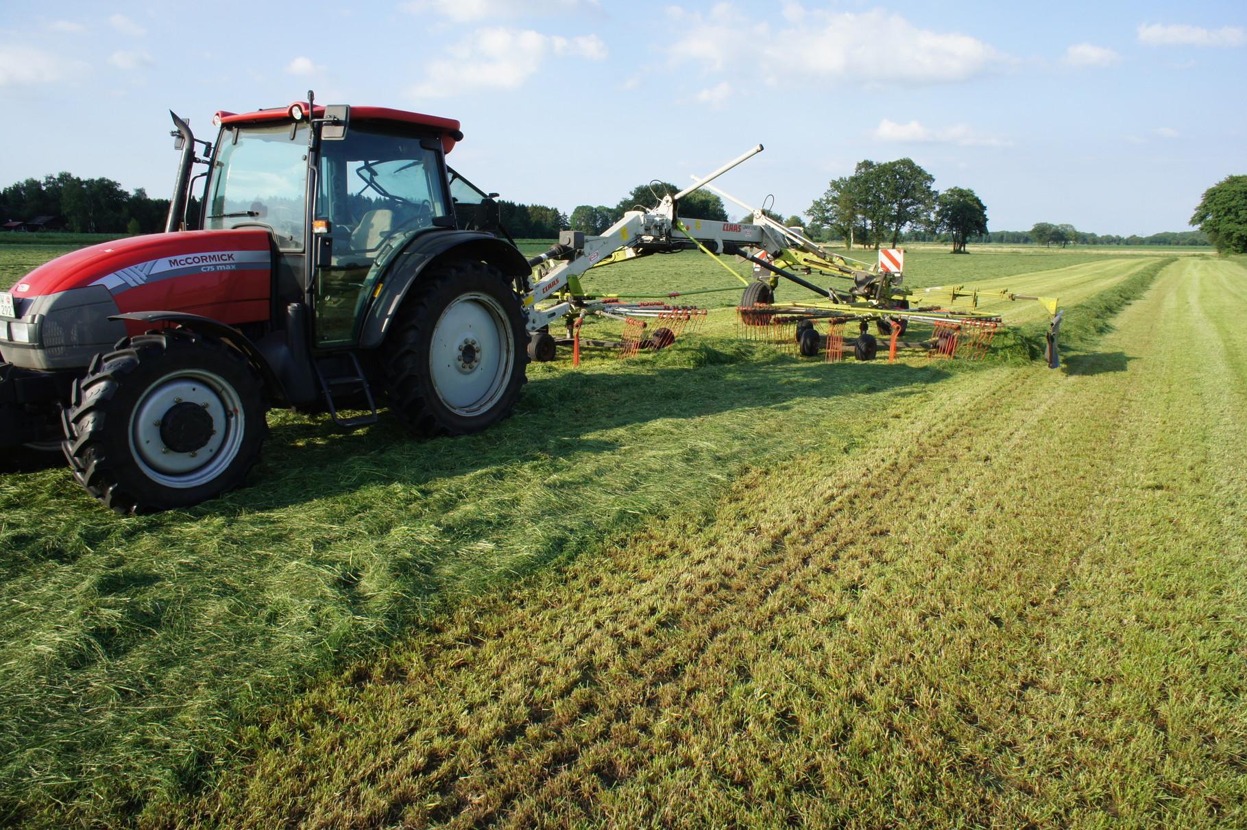 Ernte von Gras- zusammenschwaden