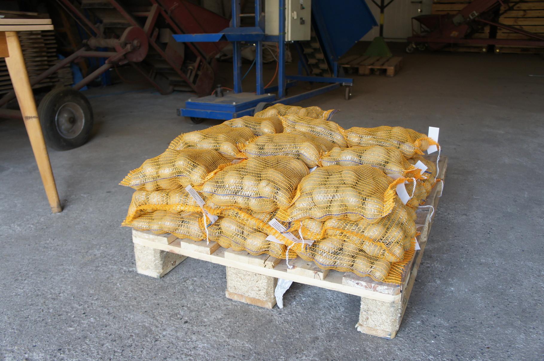 abgepackte Kartoffeln