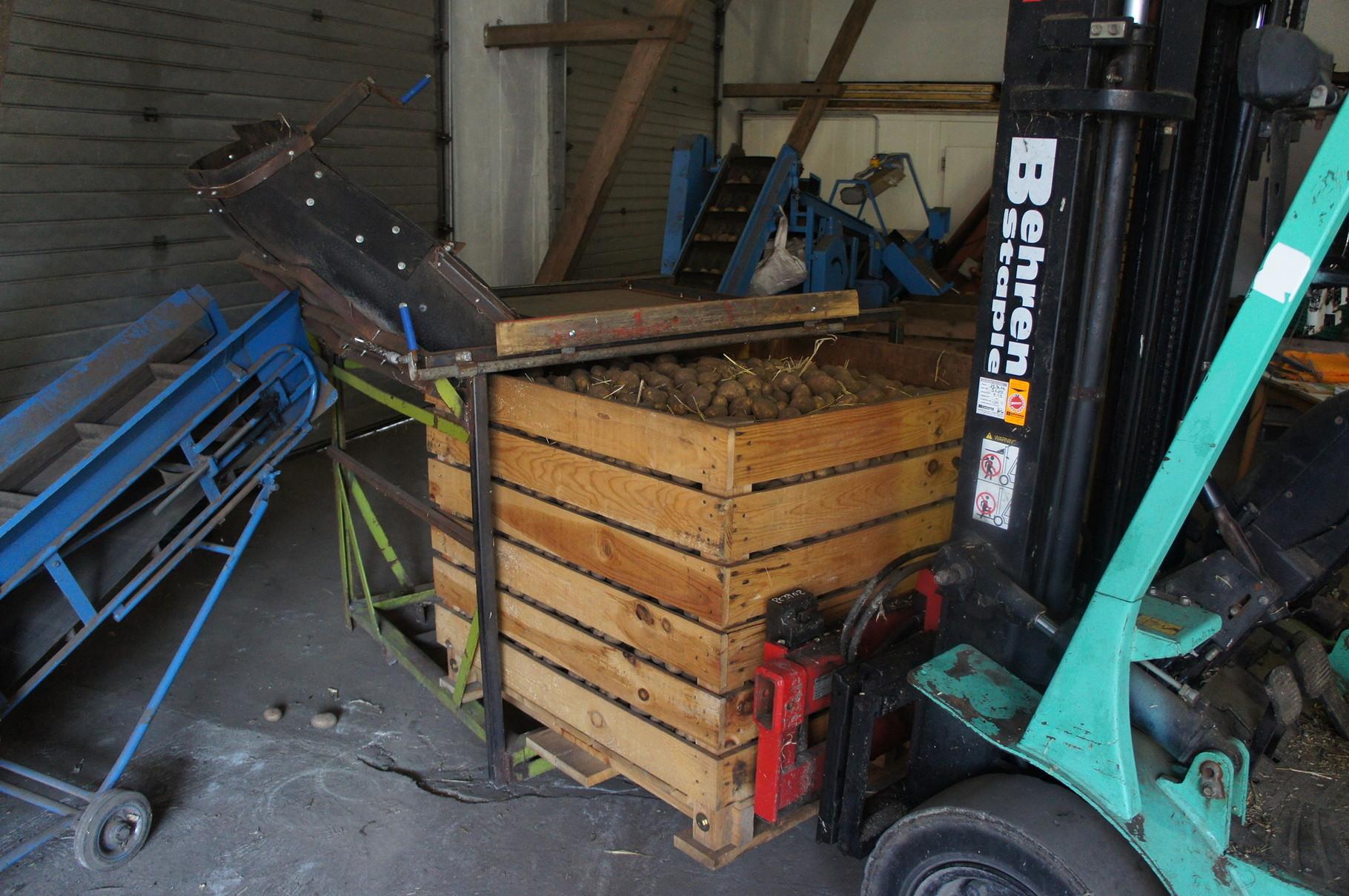 So gelangen die Kartoffeln von der Kiste zur Sortieranlage. (1)