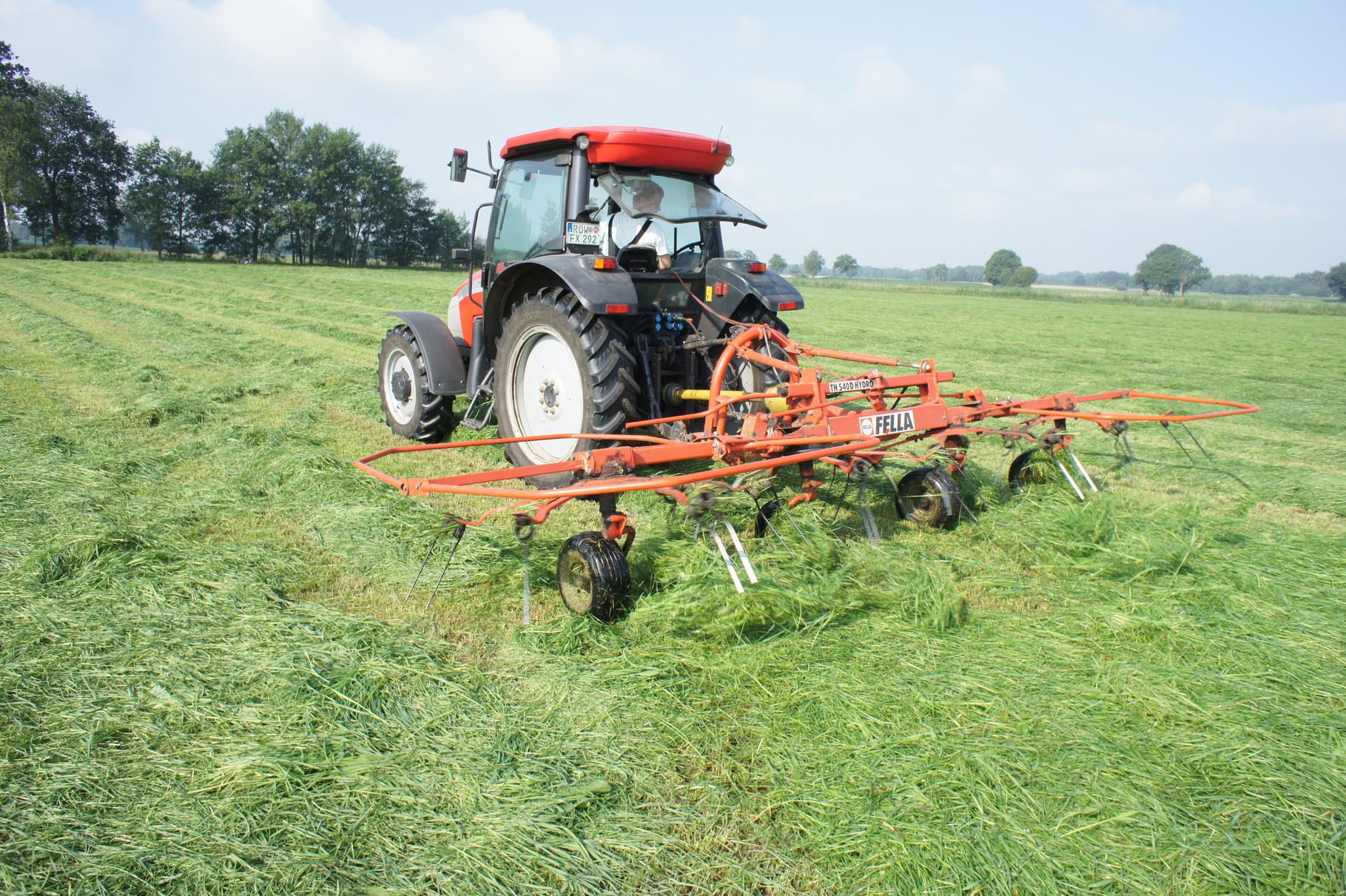 Ernte von Gras- Gras wenden