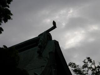 米子八幡神社本殿夕刻