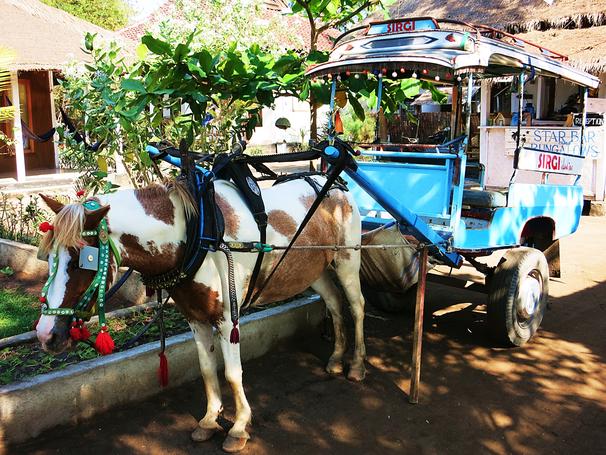 Typisches Transportmittel auf Gili Air