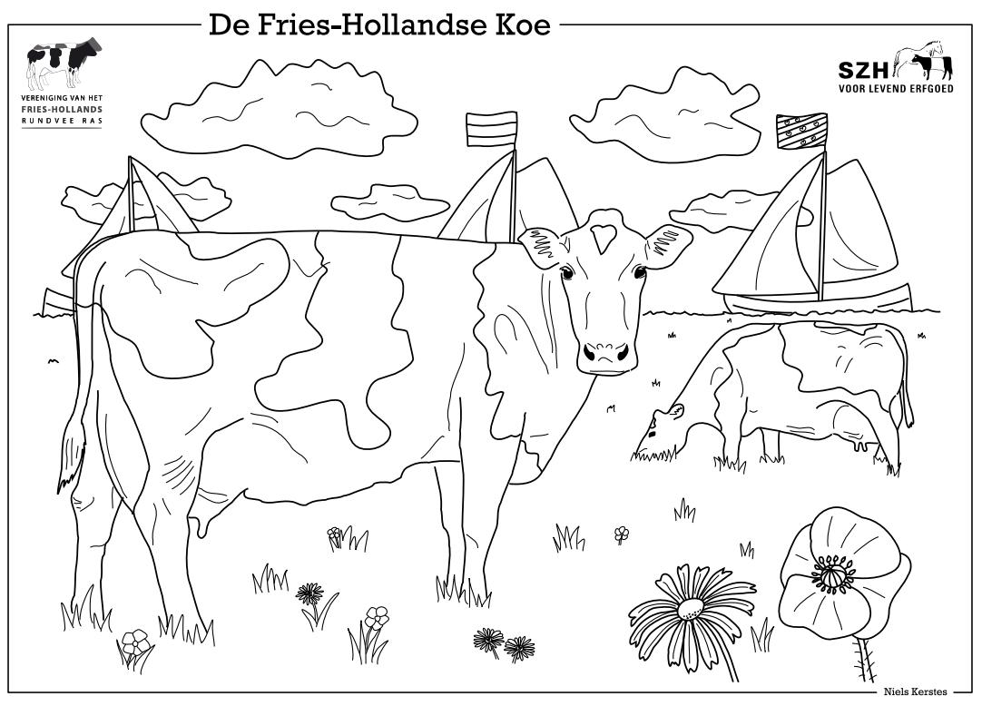 Kleurplaat Fries-Hollandse koeien