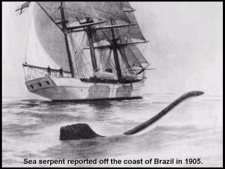 Seemonster vor Küste von Brazilien 1905