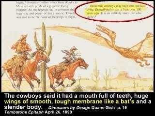 Pterodactylus in Arizona, USA von Cowboys erschossen 1890