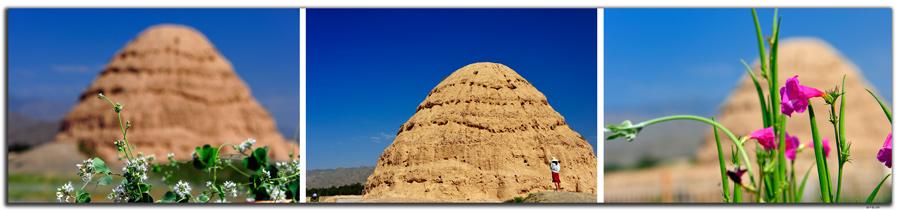 CN0232.Xixia.Tomb3
