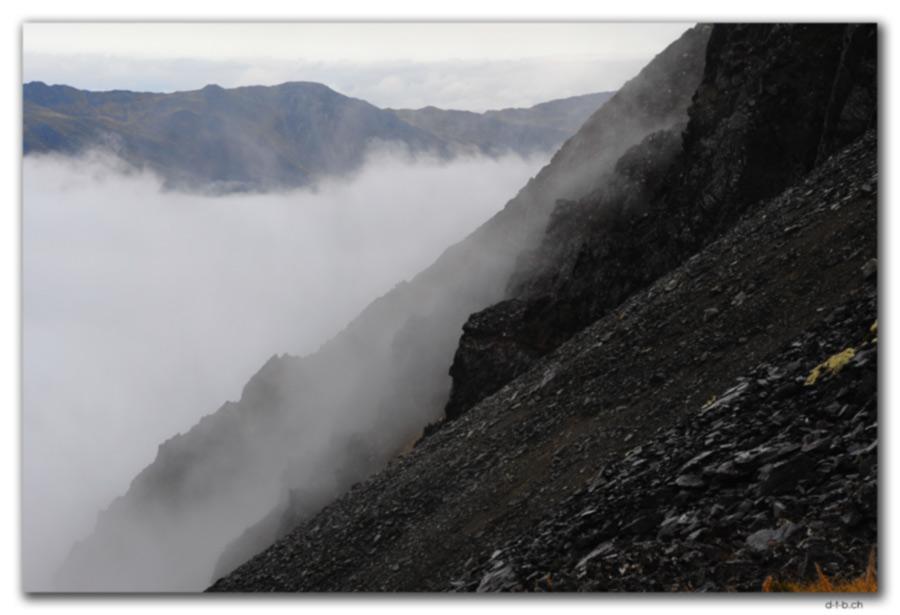 Nelson Lakes N.P. im Nebel