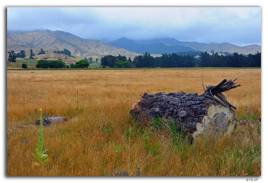 Wairau Valley
