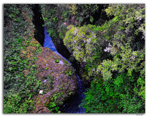 NZ0320.Kaimanawa Forest ParkTongariro River