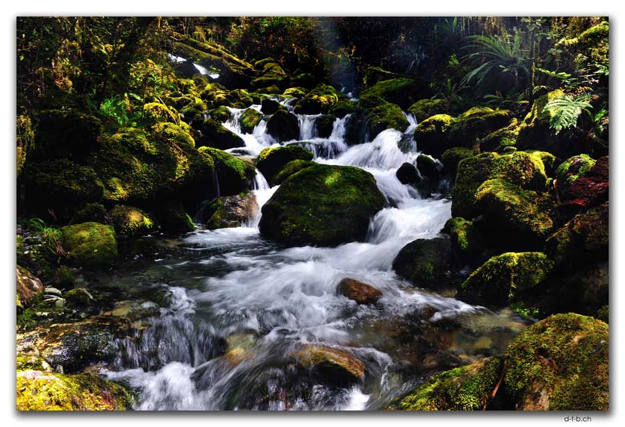 Waterfall Anatoki Track