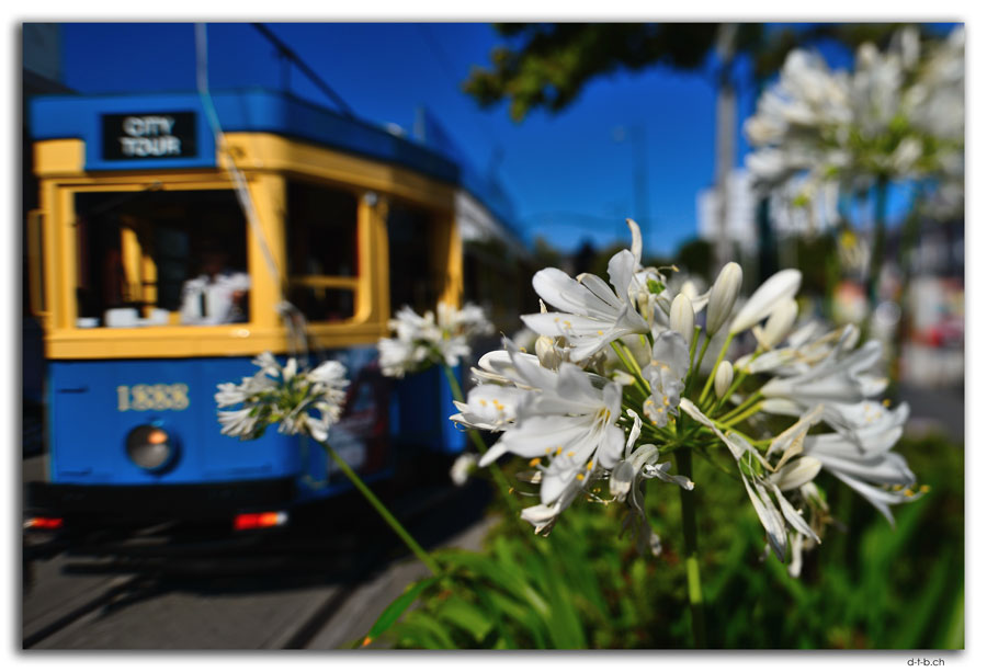 Christchurch.Tramway