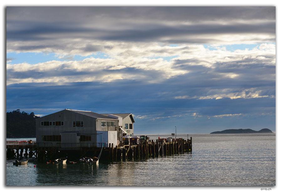 Stewart Island, Oban, Harbour