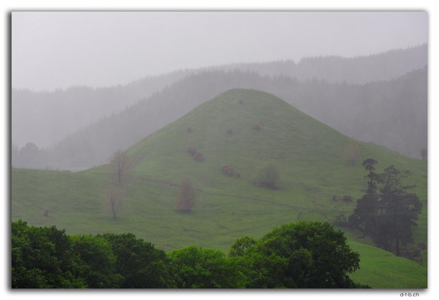 Landschaft im Regen