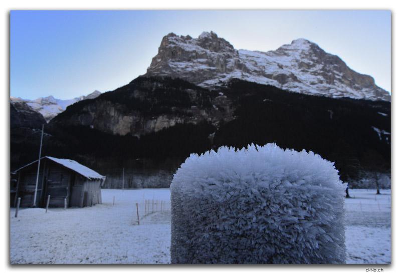 Reif, Grindelwald