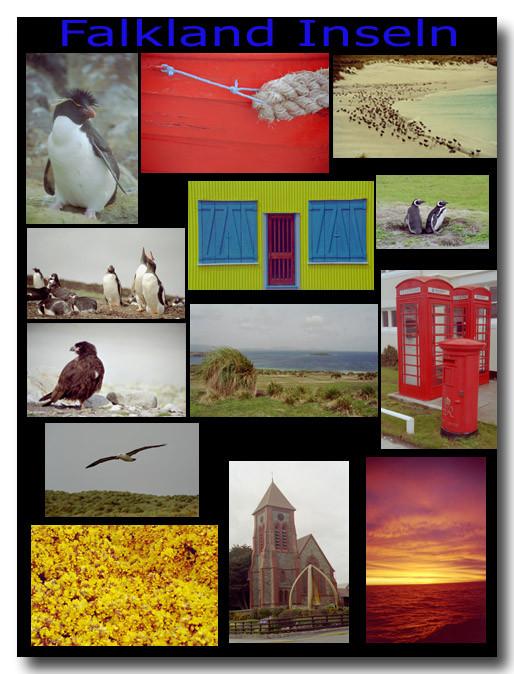 Falkland Inseln (Las Malvinas) / Falkland Islands