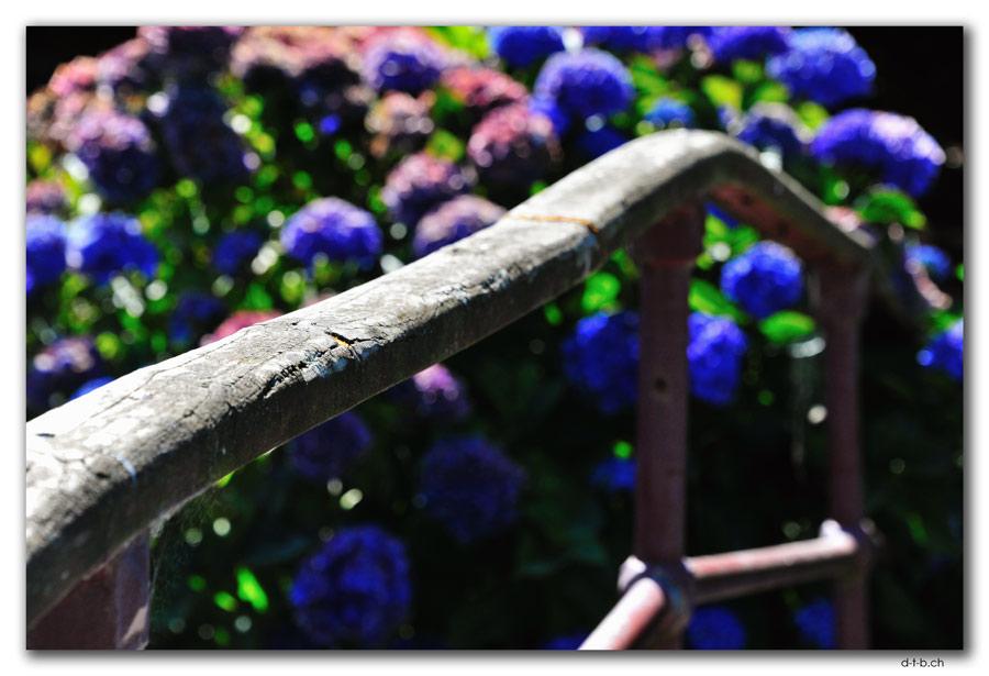 Invercargill.Otepuni Gardens
