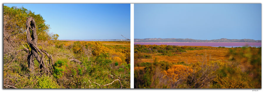 AU0479.Hutt or Pink Lake