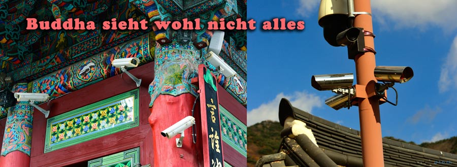 South Korea. Busan. Buddha sieht wohl nicht alles.