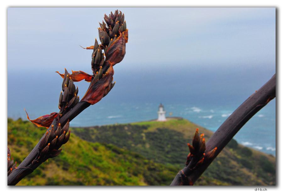 Cape Reinga, Leuchtturm