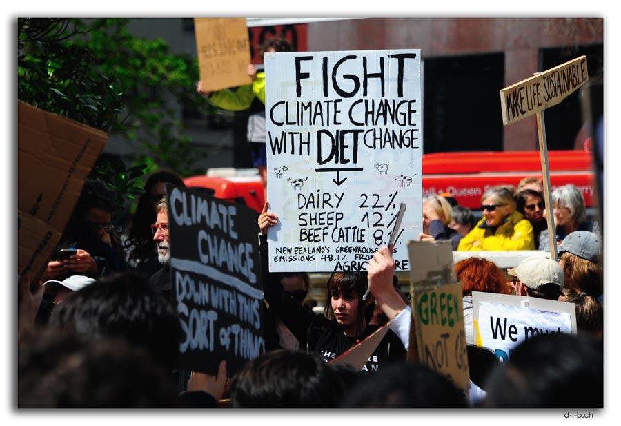 Schulstreik für das Klima