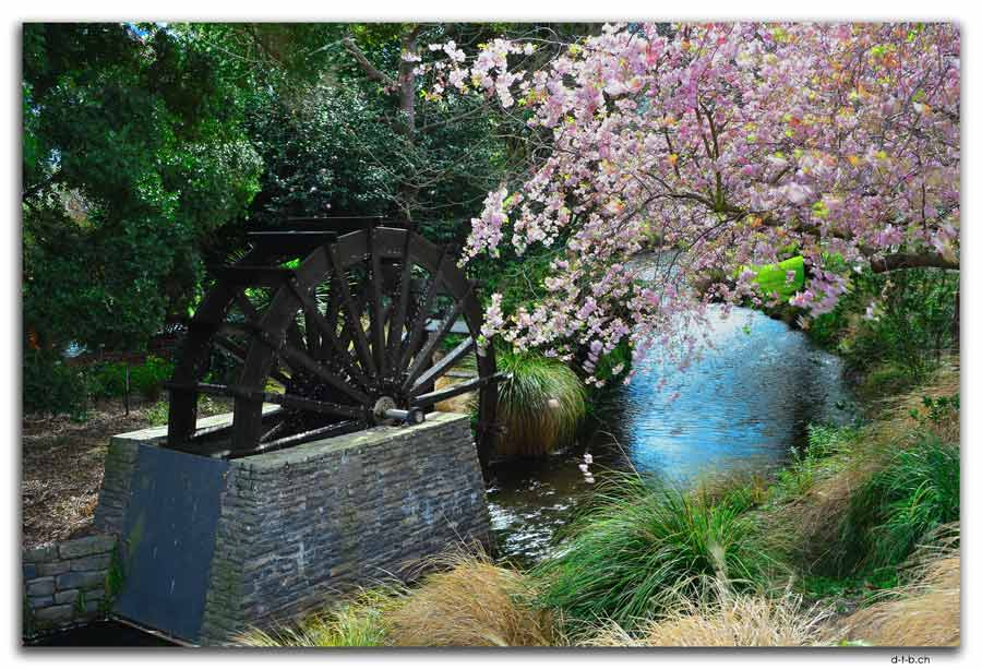 Mill wheel model and Blossom