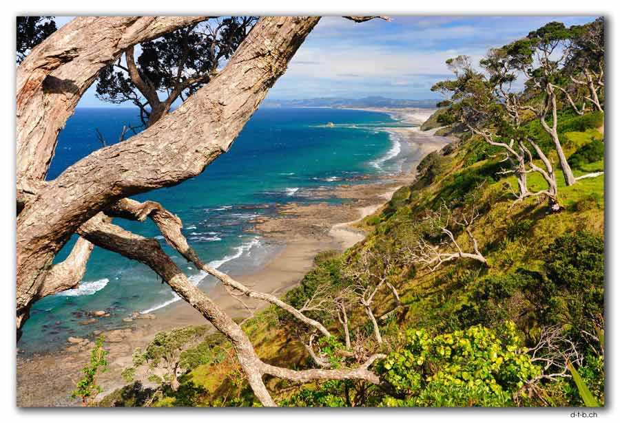 Mangawhai Head Beach. Cliff Top Walk