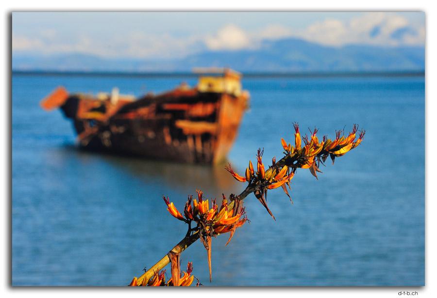Schiffswrack in Motueka
