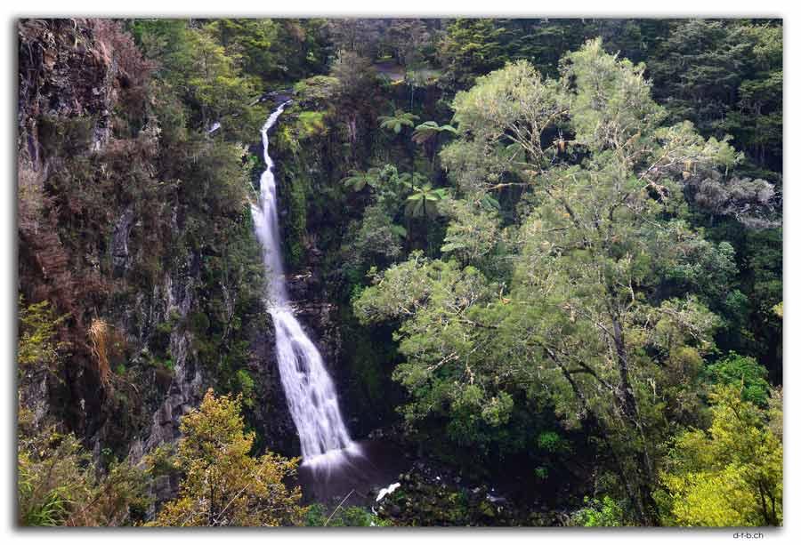 Whangarei. AH Reed Park. Pukenui Falls